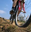Urlop na rowerze? Idealny sposób na aktywny wypoczynek!